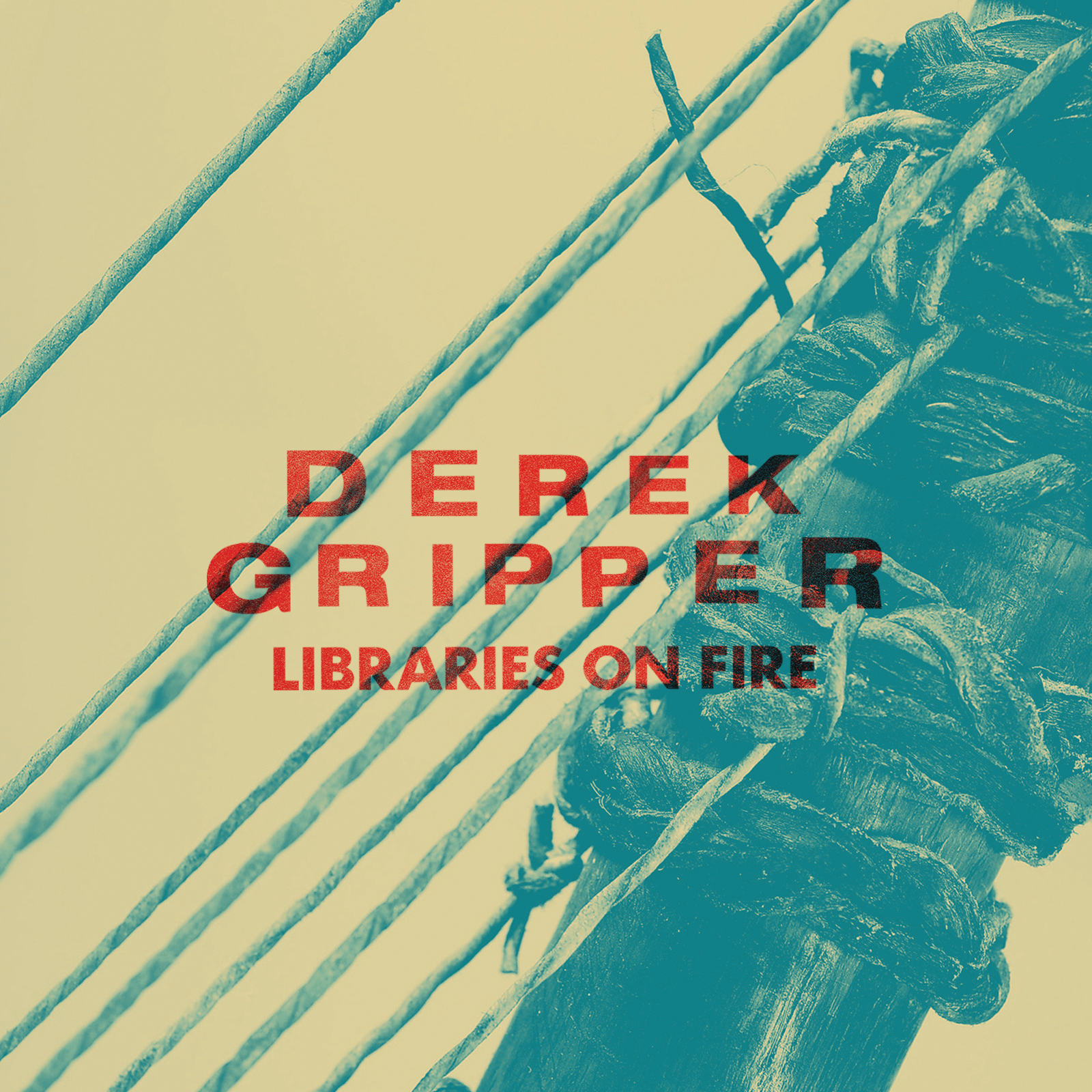 Derek-Gripper---Libraries-on-Fire-Cover